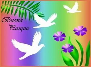 colombe-bianche-e-violette1-300x222